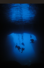 Cathedral Cave, Gozo, Malta  - Courtesy of Blue Water Dive Cove