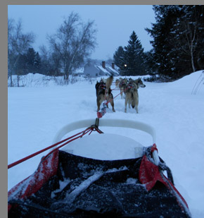 Dog Sledding - Stowe, VT - photo by Luxury Experience