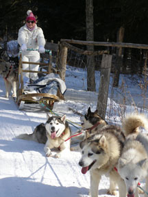 Debra the Musher - Sled Dog - Expedition Wolf, Quebec, Canada - Photo by Luxury Experience