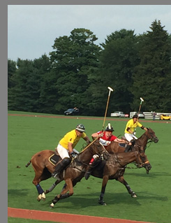 East Coast Polo - Team McLaren and Team Audi - photo by Luxury Experience