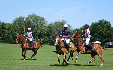 Marcs del Rio, Nic Rodan - Greenwich Polo  - USPA Monty Waterbury 2019 - photo by Luxury Experience