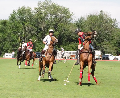 polo action - Greenwich Polo  - USPA Monty Waterbury 2019 - photo by Luxury Experience