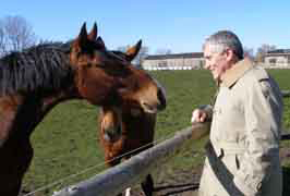 Greeting the horses at Gut Vorder Bollhagen in Germany