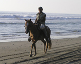 Man Riding on the Beach