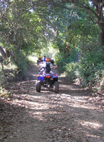 The ATV Trail