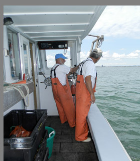 Hauling lobster trap in Boston Harbor - Photo by Luxury Experience