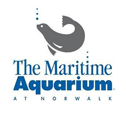 The Maritime Aquarium at Norwalk, CT