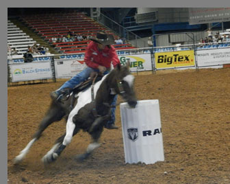 Barrel Racing -Mequite Rodeo, Mequite, Texas