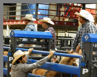 Cowboys Waiting to Ride- Mesquite Rodeo - Mesquite, Texas - photo by Luxury Experience