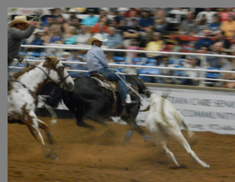 Mesquite Rodeo - Mesquite, Texas - photo by Luxury Experience