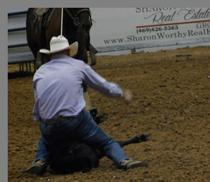 Tie Down Roping - Mesquite Rodeo - Mesquite, Texas - photo by Luxury Experience