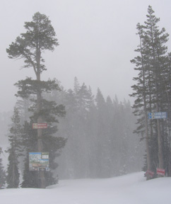 Fog Set in at Alpine Meadows - Tahoe City, California - Photo by Luxury Experience