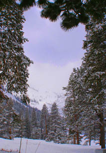 Squaw Valley - Photo by Luxury Experiene