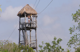 Alltournative Off Track Adventures, Riviera Maya, Mexico - The Tower at Maya Zip-Line