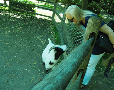 Debra C. Argen - The Zoo in Forest Park - photo by Luxury Experience