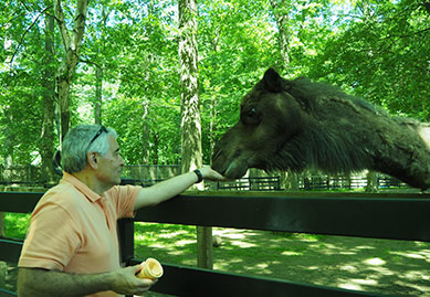 Edward F. Nesta & Max the Dromedary Camel - The Zoo in Forest Park - photo by Luxury Experience