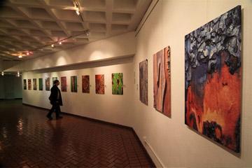 Cedric Pollet Exhibit
