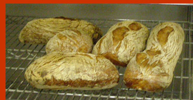 Ciabatta  - New York Culinary Experience - photo by Luxury Experience