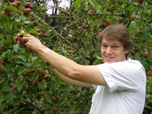 Chef John Kostuik Picking Apples