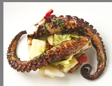 Grilled Octopus - TBar Steak & Lounge - NYC