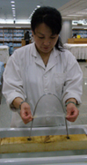 Beijing, China - Beijing Yuanlong Silk Corporation, Ltd. - stretching double cocoon