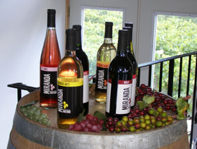 Miranda Vineyard, Goshen, Connecticut, USA - Wines - Photo by Luxury Experience