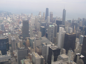 Sears Tower View