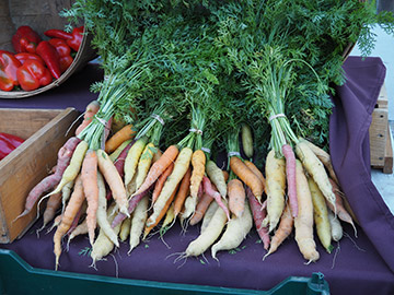 Concord NH Famers Market - Concord, NH - photo by Luxury Experience