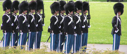 The Royal Danish Guards