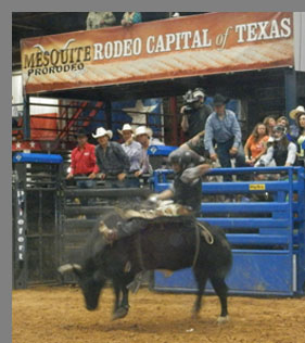 Mesquite ProRodeo - Mesquite, Texas- photo by Luxury Experience