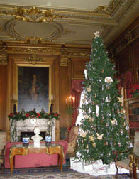 Mills Mansion, Staasburg, New York - Christmas Tree