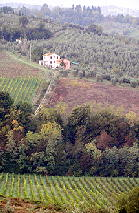 Tuscany Country Side Viewed from Il Borgo