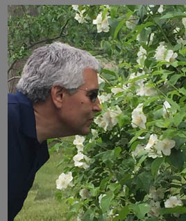 Edward F. Nesta - smelling the roses - Florence Griswold Museum - Old Lyme, CT, USA - photo by Luxury Experience