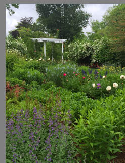 Gardens - Florence Griswold Museum - Old Lyme, CT, USA - photo by Luxury Experience