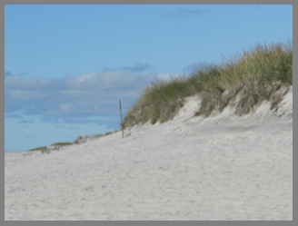 Dunes at Coopers Beach, Southampton, NY - photo by USA