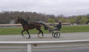 Harness Racing Museum, Goshen,NY - Practice Track - Photo by Luxury Experience