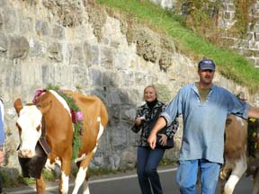 Interlaken, Switzerland - Beatenberg - Debra C Argen  running with the cows