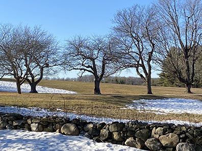 Topsmead State Park,, Litchfield, CT - Photo by Luxury Experience