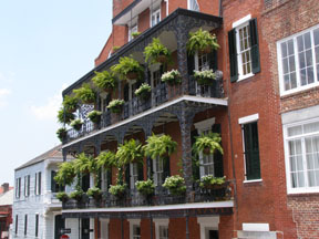 Balcony with ferns, French Quarters, New Orleans