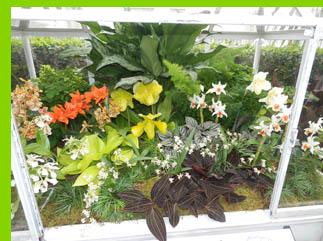 Mini Greenhouse - New York Botanical Garden - NY - photo by Luxury Experience