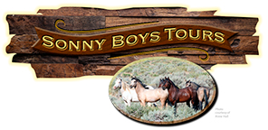 Sonny Boys Tours - Reno, Nevada