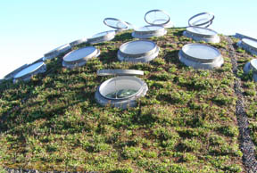 The Living Roof at California Academy of Sciences, San Francisco
