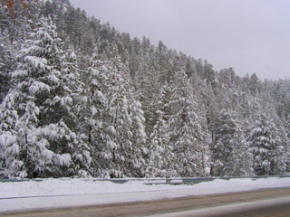 Snow fall - Reno, NV to Tahoe, CA - Photo by Luxury Experience