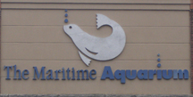 The Maritime Aquarium Norwalk,  Norwalk, Connecticut - Photo by Luxury Experience