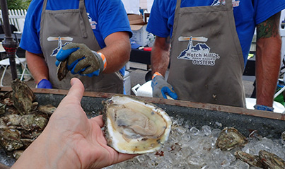 Jumbo Lumbo - Watch Hill Oysters - USA Today Network Wine and Food - photo by Luxury Experience