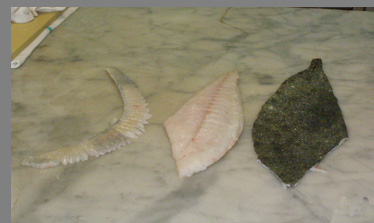 Turbot Fillet skin removed - Chef Paul Liebrandt, - New York Culinary Experience - photo by Luxury Experience