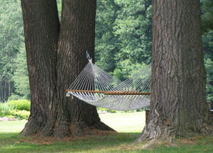 Relaxing Hammock - Blantyre, Lenox, Massachusetts, USA - Photo by Luxury Experience