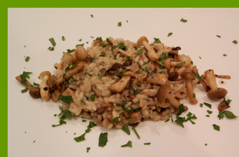 Luxury Experience - Mushroom Risotto - photo by Luxury Experience