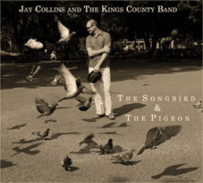 Jay Collins - The Songbird & The Pigeon