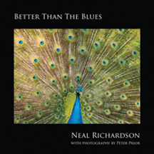 Neal Richardson - Better Than The Blues